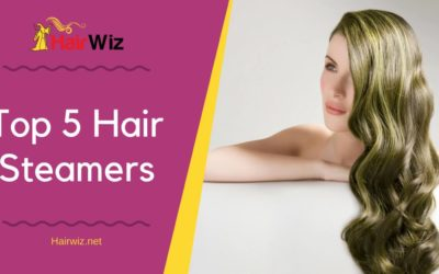 Top 5 Hair Steamers – For Softer, Bouncier, and more Manageable Hair